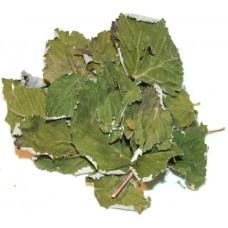Калина (лист)