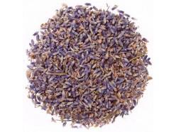 Эффективность цветов лаванды для улучшения аппетита, мигрени и инфекций мочевого пузыря