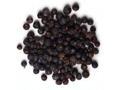 Полезные свойства плодов можжевельника